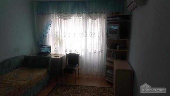 Квартира со всеми удобствами, 1-комнатная (33916), 003