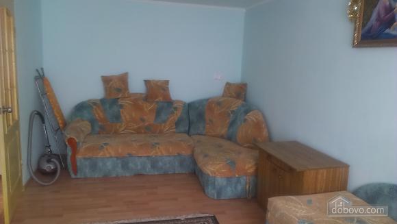 Квартира со всеми удобствами, 1-комнатная (33916), 001