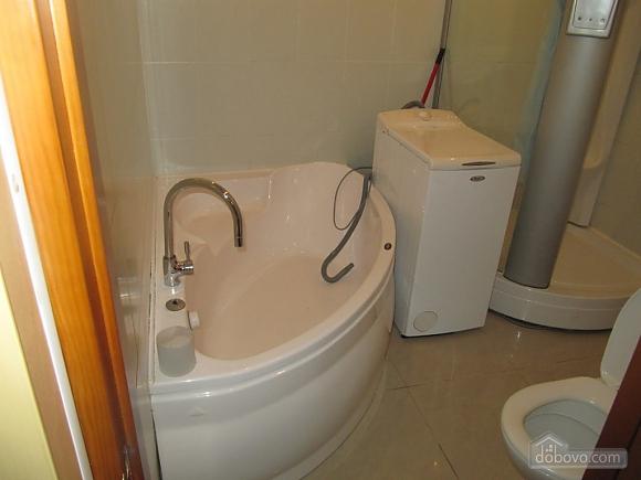 Luxury level apartment, Un chambre (64013), 005