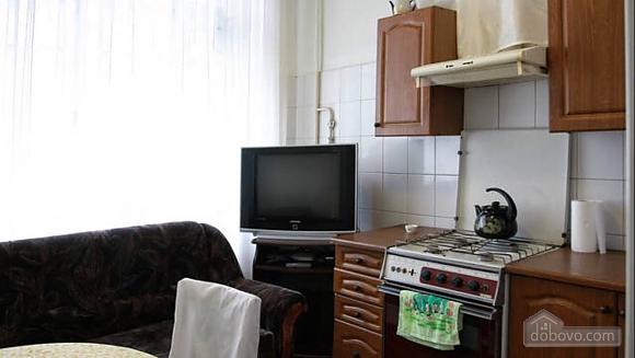 Стандартная квартира в самом центре, 1-комнатная (48903), 009