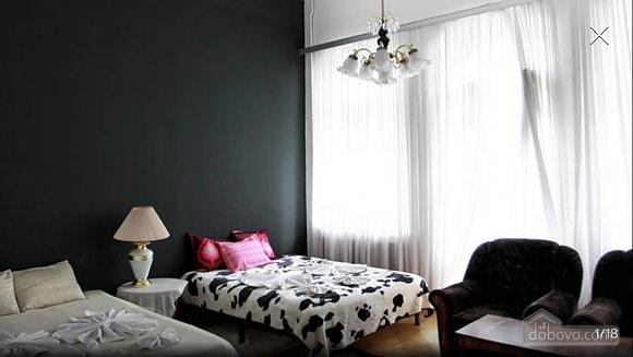 Стандартная квартира в самом центре, 1-комнатная (48903), 001