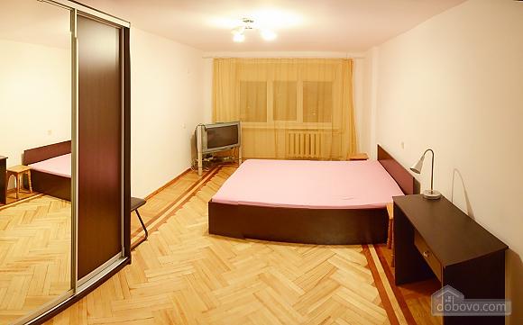 Budget apartment at Pechersk, Una Camera (15871), 001