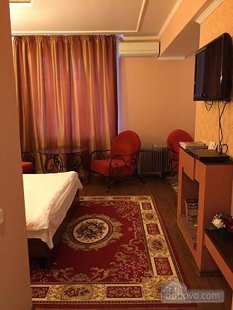Квартира в центрі, 1-кімнатна (16888), 001
