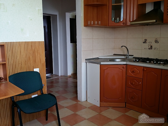 Spacious apartment in the city center, Studio (28829), 007