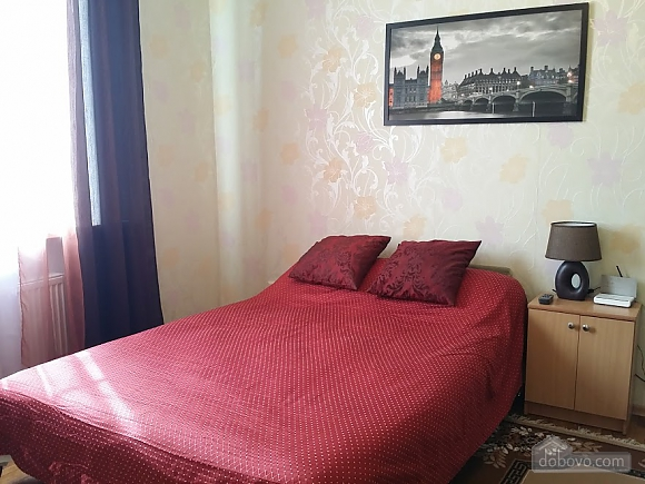 Spacious apartment in the city center, Studio (28829), 003