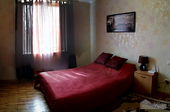 Spacious apartment in the city center, Studio (28829), 009