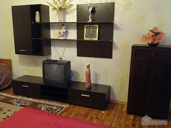 Spacious apartment in the city center, Studio (28829), 002
