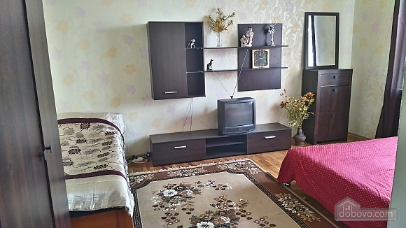 Spacious apartment in the city center, Studio (28829), 014