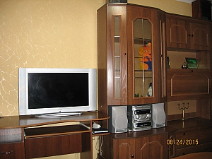 Apartment near Shevchenko street, Monolocale, 003