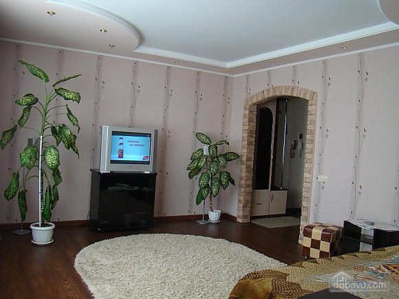 Apartment with everything you need in the city center, Studio (47304), 002