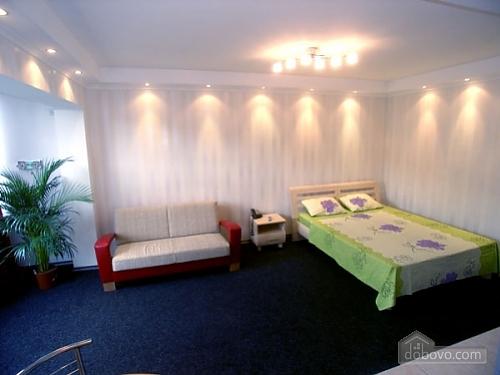 Квартира на вулиці Антоновича, 1-кімнатна (70150), 001