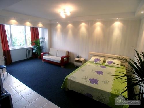 Квартира на вулиці Антоновича, 1-кімнатна (70150), 003