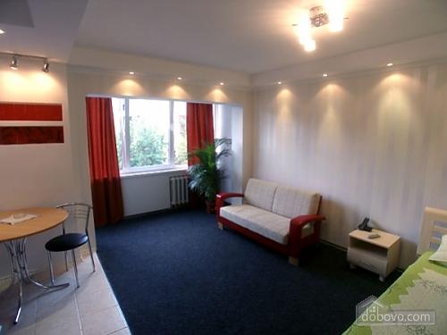 Квартира на вулиці Антоновича, 1-кімнатна (70150), 004