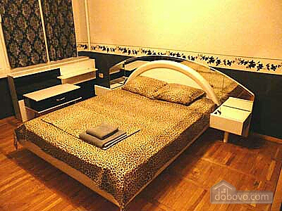 Apartment with good renovation in the center of Kiev, Zweizimmerwohnung (40359), 005