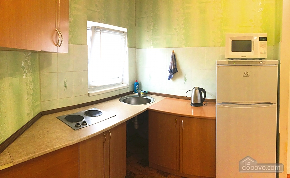 Apartment next to Demiivska metro station, Studio (47359), 011