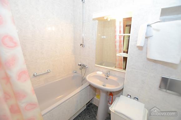 Apartment at Dmitrievska, Studio (44355), 011