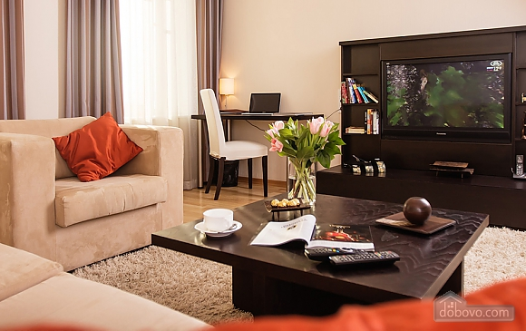 One bedroom apartment in center, One Bedroom (64495), 001