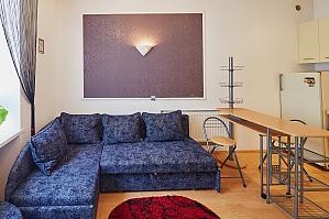 Затишна квартира в центрі міста, 1-кімнатна, 001