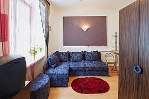 Затишна квартира в центрі міста, 1-кімнатна, 004