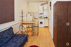 Затишна квартира в центрі міста, 1-кімнатна, 003