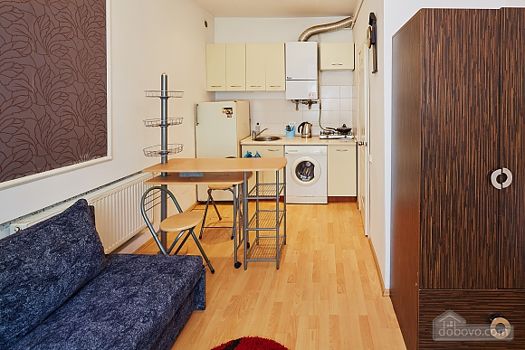 Cozy apartment in the city center, Studio (52995), 003