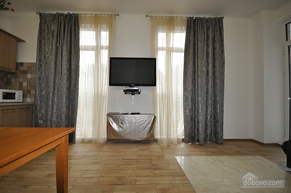 Luxury apartment in the historic district of Odessa, Un chambre (36978), 010