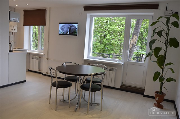 Квартира Люкс в центре Кривого Рога, 2х-комнатная (24373), 003