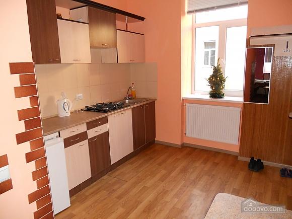 Новая квартира в центре города, 1-комнатная (65973), 003