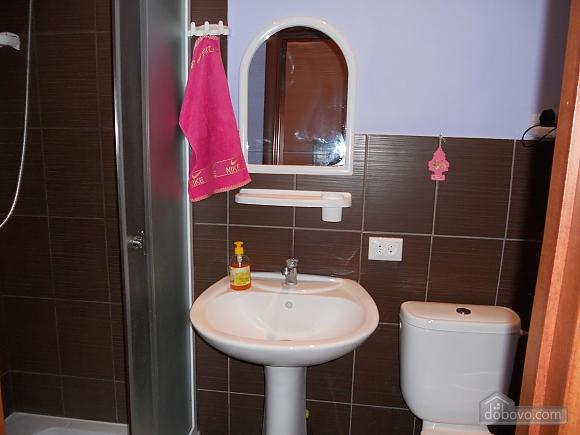 Новая квартира в центре города, 1-комнатная (65973), 004