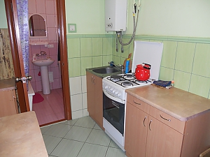 Apartment in the center of Lviv, Monolocale, 002
