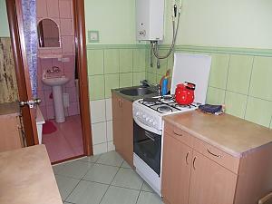 Квартира в центре Львова, 1-комнатная, 002