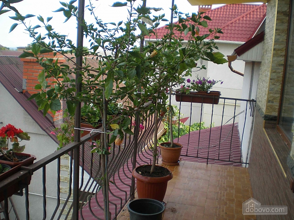 Apartment near the sea, One Bedroom (33456), 016