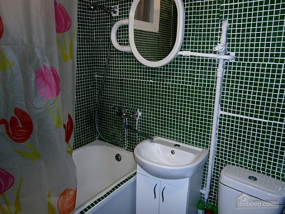 Квартира возле метро КПИ, 1-комнатная (47982), 005