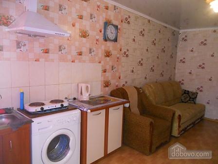 Квартира в центрі Одеси, 1-кімнатна (25342), 002