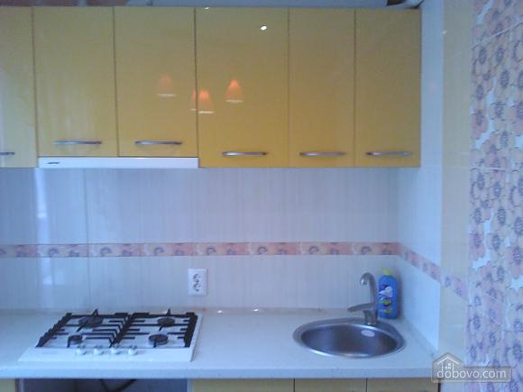 Apartment near to Studentska metro station, Studio (44289), 006