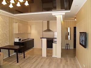 Luxury apartment with designer