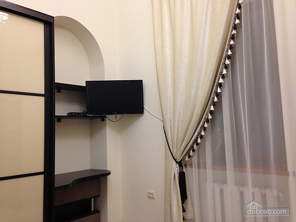 Comfortable apartment in the best area of the city, Monolocale (56005), 006