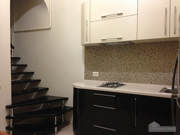 Comfortable apartment in the best area of the city, Monolocale (56005), 010