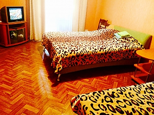 Hot and quiet apartment in the heart of city - cheques - free Wi-Fi, Studio, 001