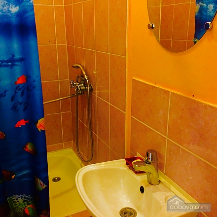 Hot and quiet apartment in the heart of city - cheques - free Wi-Fi, Studio (17431), 004