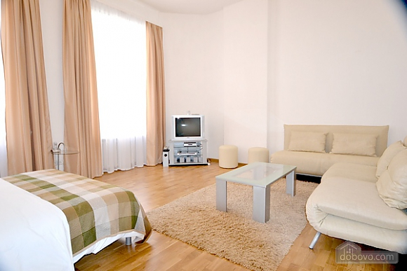 Sunny apartment next to Maidan, One Bedroom (70943), 004