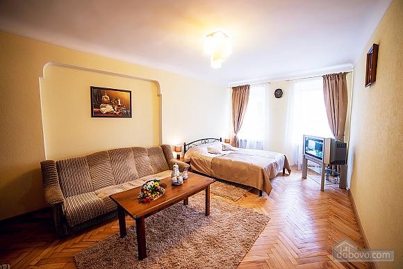 Apartment in the city center, Un chambre (55456), 005