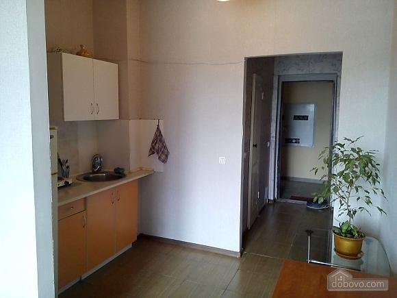 Apartment near to Beresteiska metro station, Studio (50678), 008