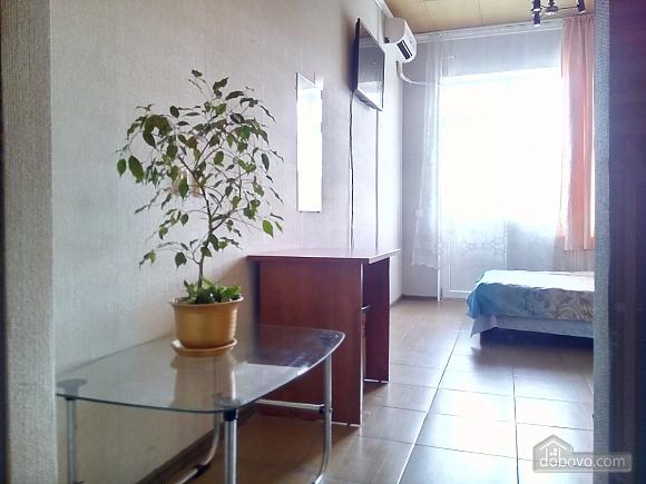 Apartment near to Beresteiska metro station, Studio (50678), 001