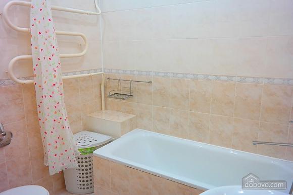 Apartment near Shevchenko park, Una Camera (48362), 034