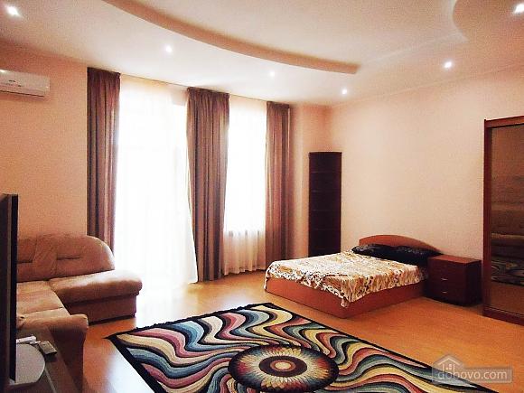 Spacious apartment, Studio (93999), 003