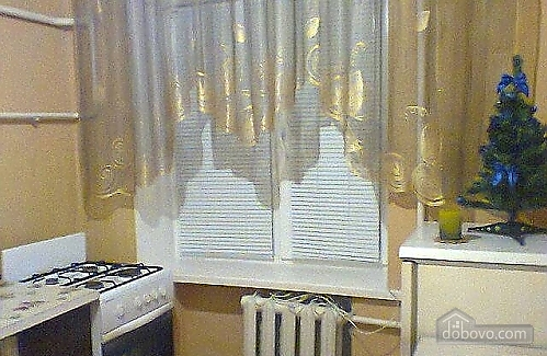 Apartment in Zhytomyr with Wi-Fi near the train station, Studio (93919), 002