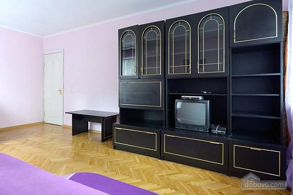 Чудова квартира на Майдані, 2-кімнатна (43541), 008