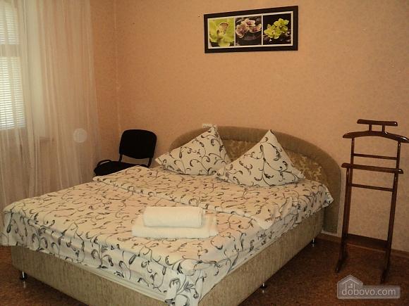 Однокомнатная квартира возле парка Александрия, 1-комнатная (95428), 002