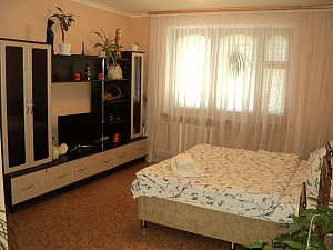Apartment near Olexandria park, Studio, 001
